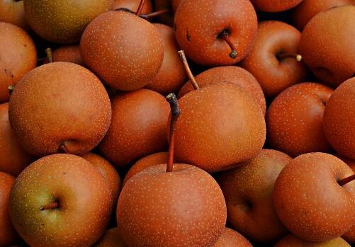 梨的功效与作用有哪些?什么时候吃好?不能和什么一起同吃?