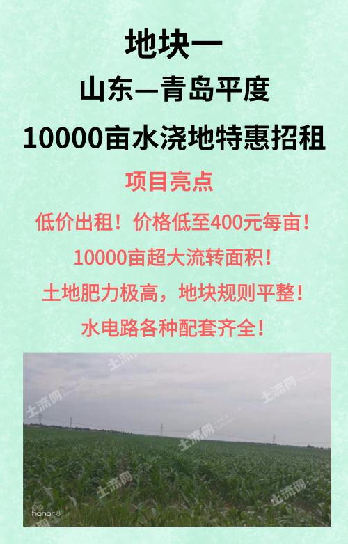 青岛平度10000亩优质水浇地