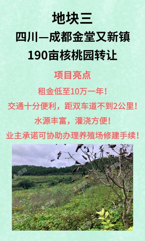 成都金堂县190亩核桃园