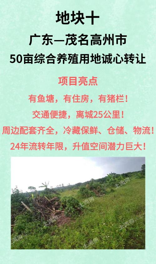 广东茂名高州市50亩综合养殖用地