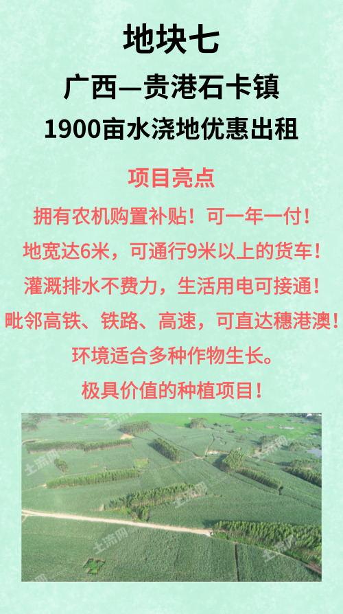 广西贵港石卡镇1900亩旱地