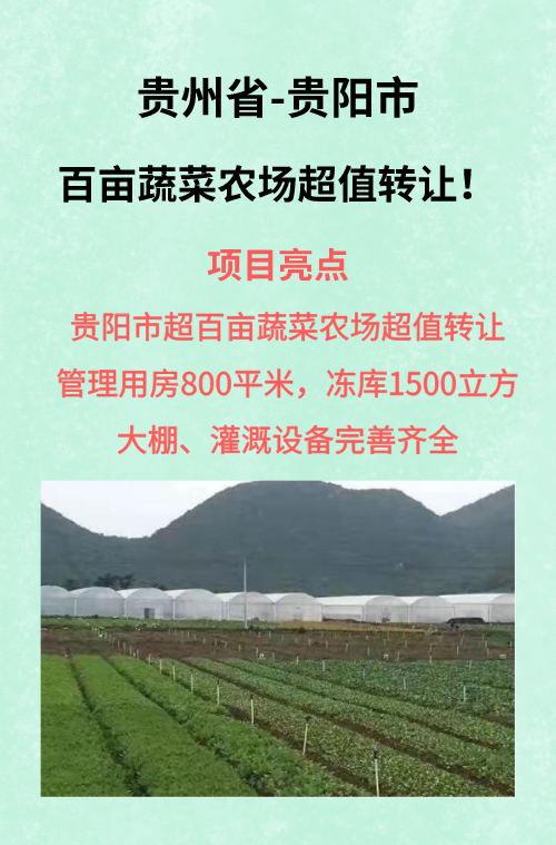 贵州省贵阳市百亩蔬菜农场超值转让