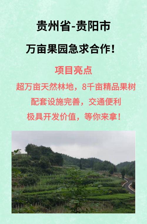 贵阳观山湖区万亩果园
