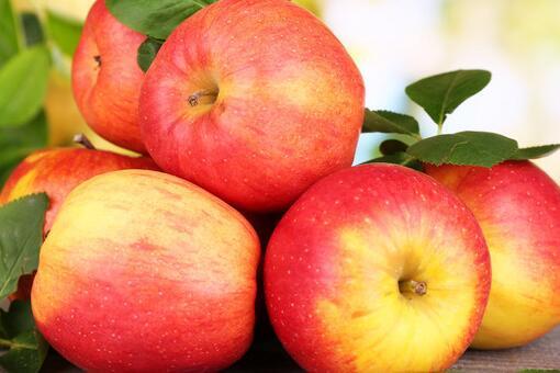 苹果种类有哪些
