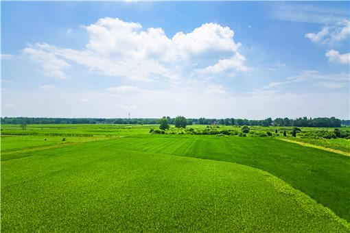 永久农田和一般耕地、基本农田的区别是什么