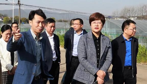 湘潭領導考察