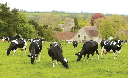 英国农场是做什么的农场主要种植作物的和饲养动物.