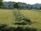 土地流转和征用一样吗?农民会因此失去自己的土地吗?
