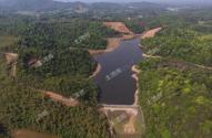 什么是林权流转?哪些可以流转?哪些人可以购买、租赁、承包林地资源?