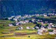 农田承包土地变更申报需要具备哪些条件?