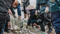 2019年各大河流禁渔期结束:哪些流域可以捕捞?
