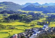 在农村办一个旅游项目,如何办理土地手续?