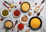 专家深入黑龙江省  调研当地食品与农副产品精深加工产业发展情况