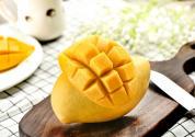 大芒果种子怎么种