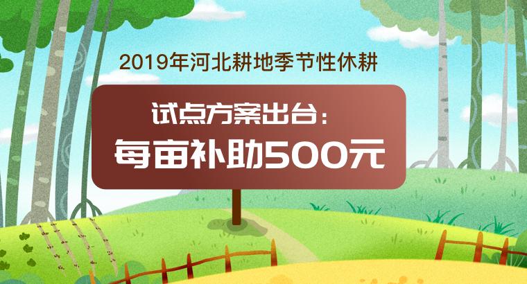 2019年河北耕地季节性休耕试点方案出台:每亩补助500元