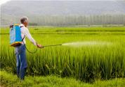 如何开展农业节肥节药行动?农村农业部:继续对化肥农药使用量零增长行动予以支持