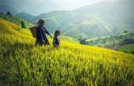 2019年农民丰收节是几月几号?放假几天?