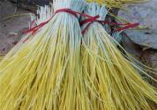 开胃健身蔬菜蒜黄有哪些种植方法?