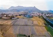 2019土地管理法出台,对农村土地流转有何影响?附全面解读