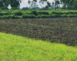 耕地占用税法9月1日施行!需缴纳的人群有哪些?哪些情况可以减免税费?