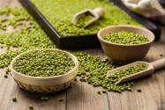 今年绿豆多少钱一斤?附功效与作用参考