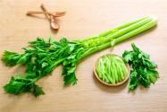 芹菜是粗纤维的菜吗?