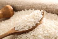 目前市面上的大米价格多少钱一斤?生虫了怎么办?