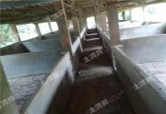 广东茂名高州市50亩综合养殖用地诚心转让!