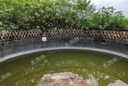 成都金堂县190亩核桃园转让——环境优越,可建养猪场!