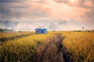《农村电商发展趋势报告》发布!应该怎么解读?