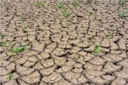 江西水库见底是怎么回事?对农民有什么影响?