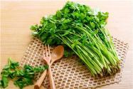 2019年北京香菜多少钱一斤?它的功效与作用是什么?
