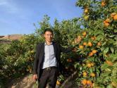 新型创业者刘世洪:半月成交5600亩林地,引资2亿助家乡发展