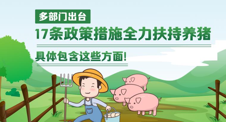 多部门出台17条政策措施全力扶持养猪 具体包含这些方面!