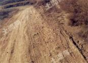 土地承包关系稳定并长久不变如何实施?到期后再延长30年!