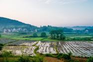 农民进城落户后土地怎么办?可以弃耕抛荒吗?