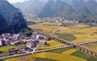 农业农村部:第二轮土地承包到期后坚持延包,不得打乱重分!