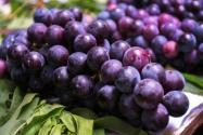 葡萄怎么洗才干净?怎么保存不会坏?这四种大发彩票方法 必须收藏!