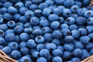 """""""五大健康水果之一""""蓝莓怎么洗才干净?怎么吃比较好?"""