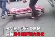 肉联厂洗白病死猪是什么情况?猪肉被卖到哪里?情况控制住了吗?