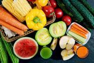 2020年全年蔬菜种植时间表汇总!当季蔬菜种起来