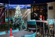 圣诞树是什么树?价格是多少钱一棵?