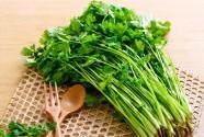 香菜价格多少钱一斤?什么时候种植?高产栽培技术有哪些?