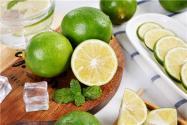现在四季柠檬树苗价格是多少?它的种植技术有哪些呢?