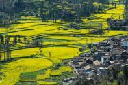 农村土地使用证怎么办理?作用有哪些?