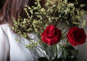 一天上百万支玫瑰被销毁,今天你送对象玫瑰花了吗?