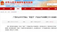 """广西农业农村厅推出""""菜篮子""""产品生产和销售工作十条措施"""