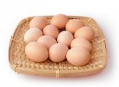 鸡蛋价格为什么这么低?之后还会再涨吗?