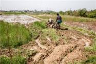 今日雨水,应该准备干什么农事呢?雨水过后还有哪些安排?