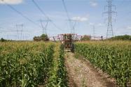 农药企业如何应对疫情?附农业农村部优化措施及自救方法!